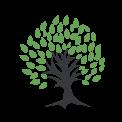 TreeCapital